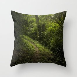 Green path Throw Pillow