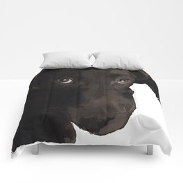 Chocolate Labrador Puppy Comforters