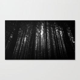 Norwegian woods - Bergen, Hordaland Canvas Print