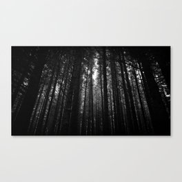 Norwegian woods - Bergen, Hordaland Canvas Print