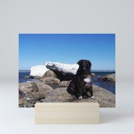 Dog and Iceberg on Windy Day Mini Art Print