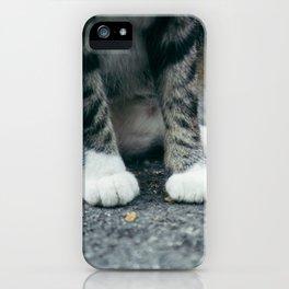Cat in White Socks iPhone Case
