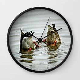 Duck Bums Wall Clock