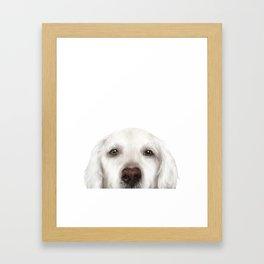 Golden Retriever WhiteDog illustration original painting print Framed Art Print