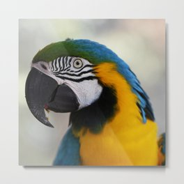 Tropical Bird Metal Print