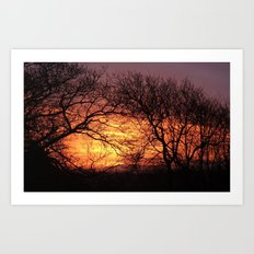 TREES SILHOUETTED BY FIERY DAWN SUNRISE IN DEVON Art Print