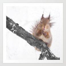 Little squirrel - smack! Art Print