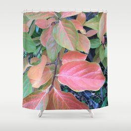 Persimmon tree Shower Curtain