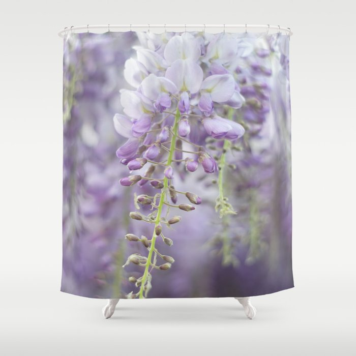 Wisteria Shower Curtain By Hollysnappingstuff