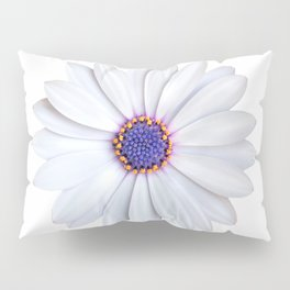 daisy daisy Pillow Sham