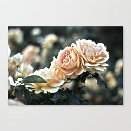 """Flower Art - Sunset Floral Print - Coral Pink, Peach, Yellow - Shabby Chic Art - """" Three Roses"""" Canvas Print"""