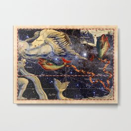 Helvetius Pisces Metal Print