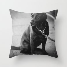 Billy the Dog Throw Pillow
