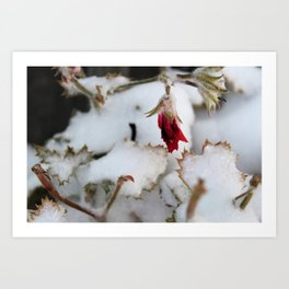 Winters First Blast Art Print