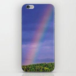 Under the Rainbow iPhone Skin