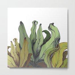 drawing leaves Metal Print