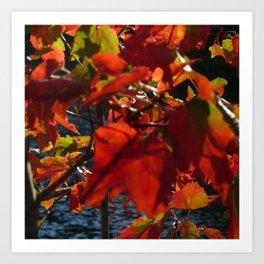 Red Leafs Of Fall Art Print