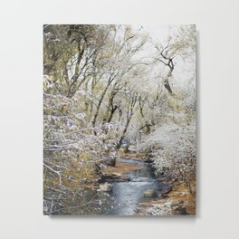 A Creek on a Snowy Day in Boulder, Colorado Metal Print