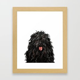 Black Puli Dog Framed Art Print