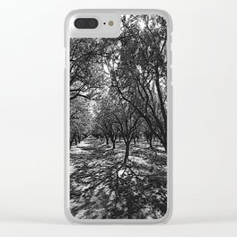 Black & White California Almond Orchard  Pencil Drawing Photo Clear iPhone Case