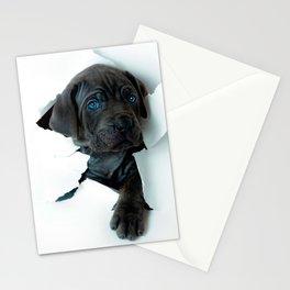 Neapolitan Mastiff black dog  Tearing Through Stationery Cards