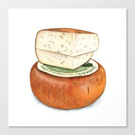 Pecorino Cheese Canvas Print