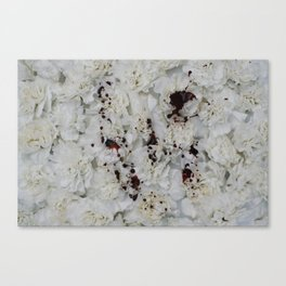 Flowers II Canvas Print