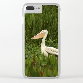 American White Pelican Clear iPhone Case