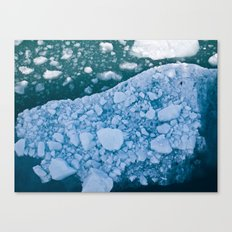 Chilled Ice Cold! Canvas Print