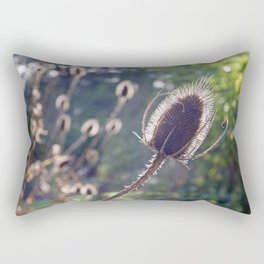 Teasel flower in Autumn Rectangular Pillow