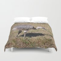 ostrich Duvet Covers featuring Baby Ostrich by Sarah Shanely Photography