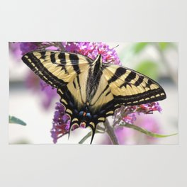 Western Tiger Swallowtail on the Neighbor's Butterfly Bush Rug