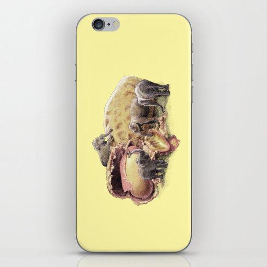 Elephant's Paradise (colour option) iPhone & iPod Skin