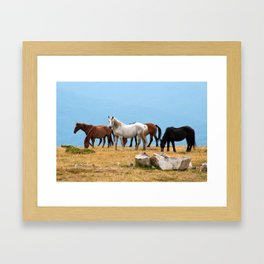 Mountain Horses Framed Art Print