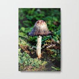 Ink Cap Mushroom Metal Print