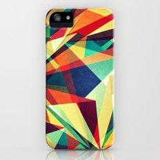Broken Rainbow iPhone (5, 5s) Slim Case