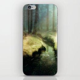 Small stream iPhone Skin