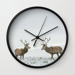 First Snow (75) Wall Clock