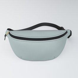 PPG Glidden Accent Color to Night Watch Blue Willow Green PPG1145-4 Solid Color Fanny Pack