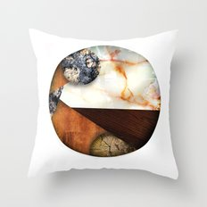 All the World Throw Pillow