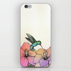 Hummingbird and Hibiscus iPhone & iPod Skin