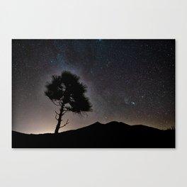 Teide National Park at night Canvas Print