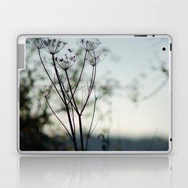 Seed Pods Laptop & iPad Skin