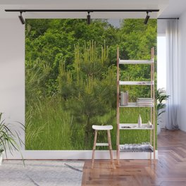 Pine and Green Meadow Wall Mural