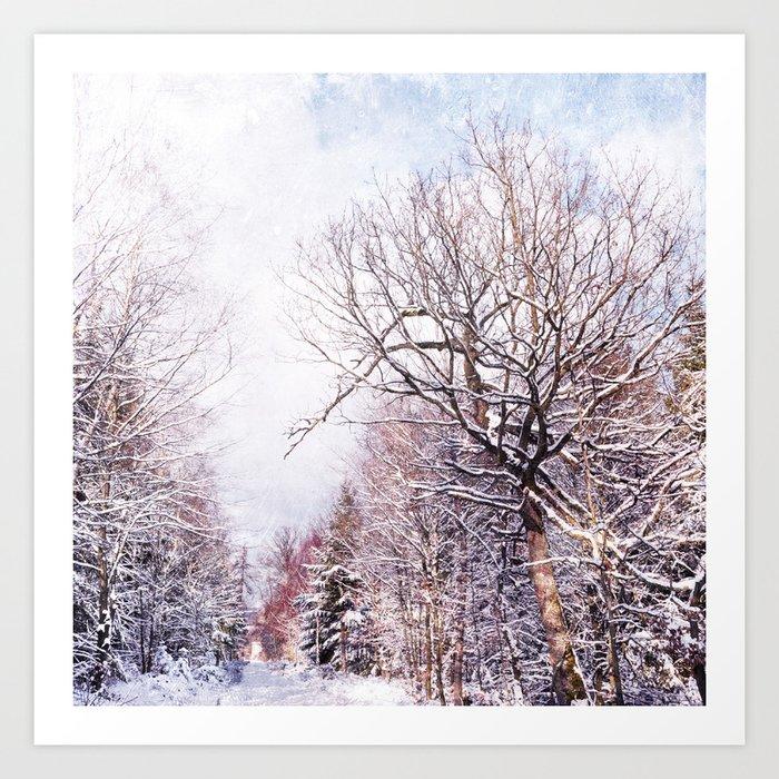 winter trees in sunlight Art Print