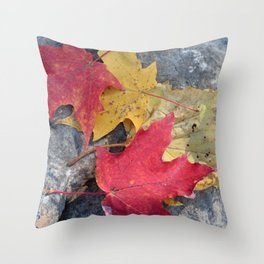 Red and Gold Leaves Throw Pillow