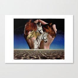 Taming Horses Canvas Print