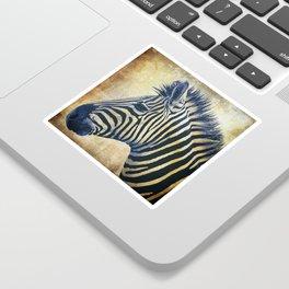 Zebra Portrait Pop Art Sticker