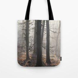 Winter Sunrays Tote Bag