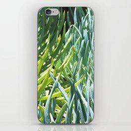 Suculents iPhone Skin